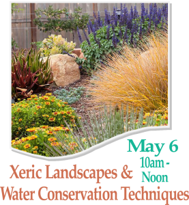 XERISCAPING In the Railyard Park @ Railyard Park | Santa Fe | New Mexico | United States
