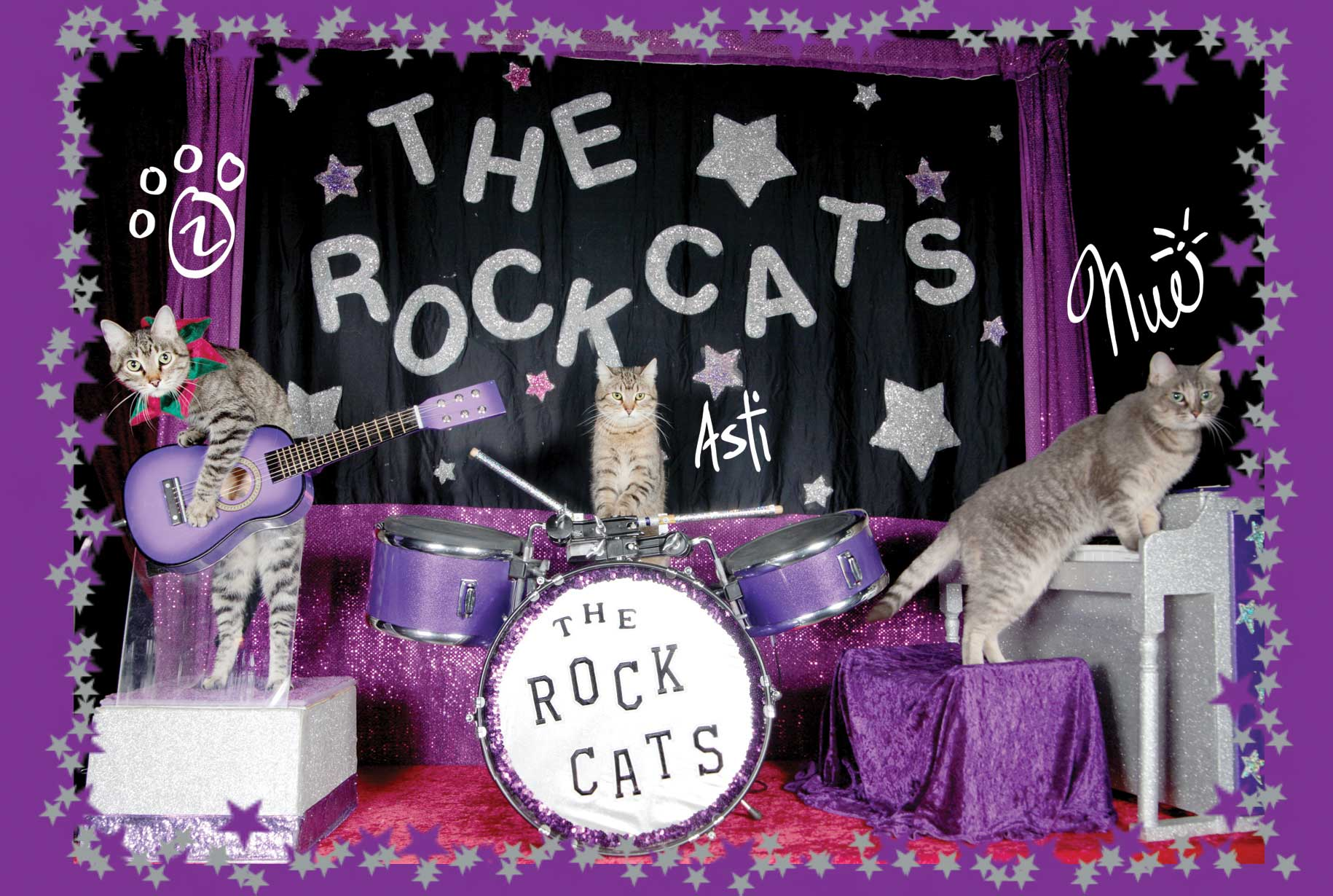 ACROCATS! @ Studio Center of SF (formerly Warehouse 21) | Santa Fe | New Mexico | United States